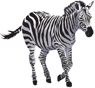 Zebra-PNG by yotoots