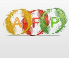 AFP logo by Forbs1994