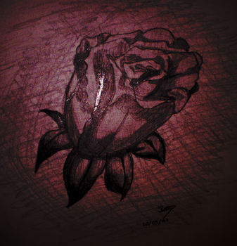rose by Kim-Mariet