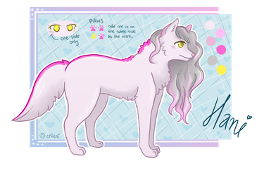 Hani - Reference Sheet by chieni
