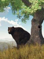 Sitting Bear by deskridge