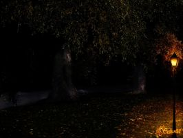 Premade Background :: A Night in the Park by Selunia