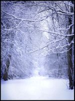 the white forest by StillNeedsFixing