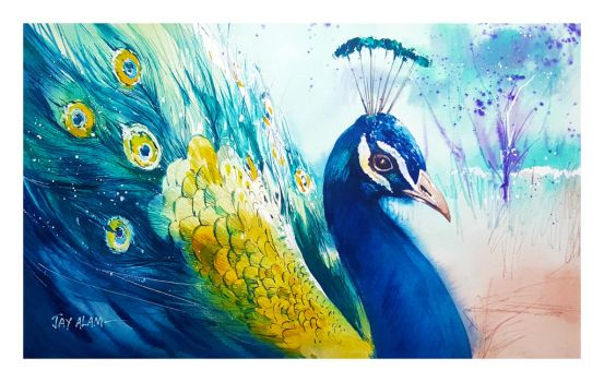 Peacock - Watercolour Painting by Abstractmusiq