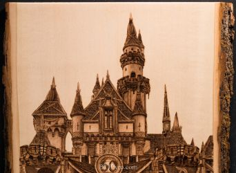 Pyrography of the Disneyland castle by brandojones