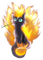 OMG! Solice Is On Fire!!!! :O by Umikah