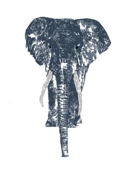 Elephant for a T by marvah
