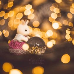 Bokeh catcher. by OliviaMichalski