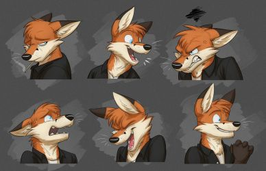 Commission: Robin's Expression Sheet by Temiree