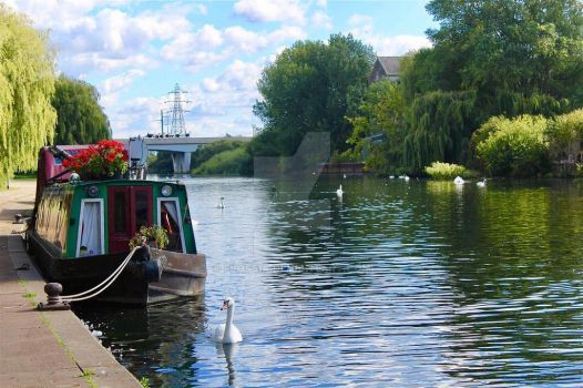 Rosie and Jim: Real Life by Flossia