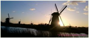 Mills in the Kinderdijk by swiftach