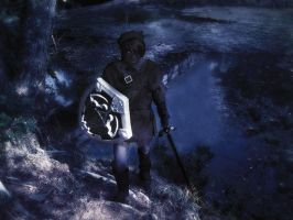 dark link arises from the lake by erockson