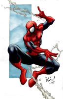 another spidey by logicfun