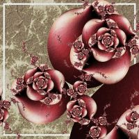 Rosa Fractalicus by CoffeeToffeeSquirrel