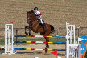 Level 5 Showjumping - L-Springen 16 by LuDa-Stock