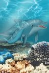 mom dolphin by Ericorion