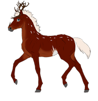 N2937 Padro Foal Design by casinuba