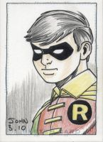 Robin by JohnJett