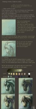 Drawing a horse tutorial by paula2206