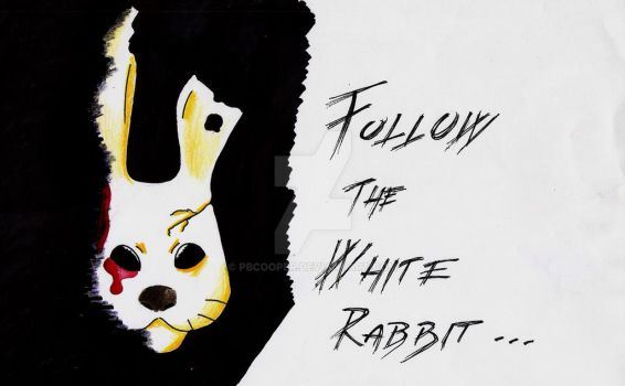 Follow the White Rabbit... by PBCooper