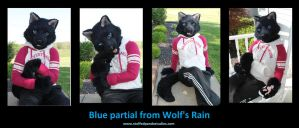 Blue Wolf's Rain Partial by stuffedpanda-cosplay