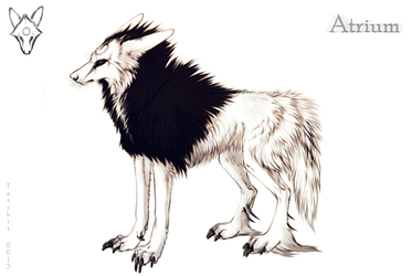 Reference Sheet: Atrium by NukeRooster