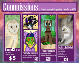 Commission Sheet by RinnWorks