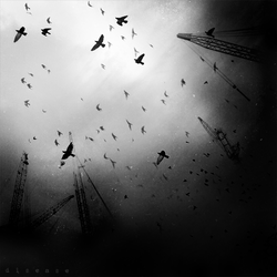 beneath the crown of cranes II by disies