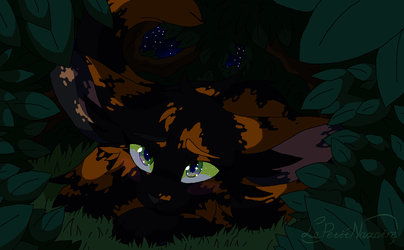 Nightheart's looking at the night sky by LePetitNazaire