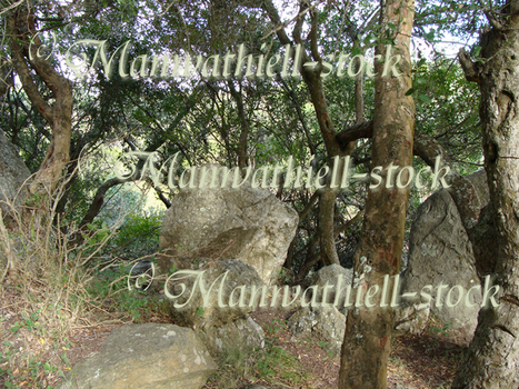 Trees_Rock  Exclusive by Manwathiell-Stock
