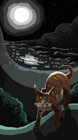 Tawnypelt of ShadowClan by canniefish