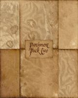 Parchment Papers 2 by MediocreMemory
