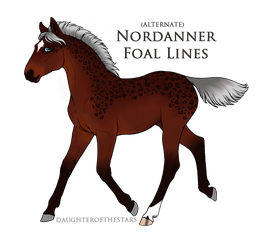 5825 Foal Recreation by AhernStables