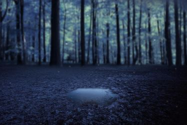 Lonely Puddle Premade Background by KarahRobinson-Art