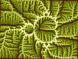 Mandelbrot Leaf by MakinMagic
