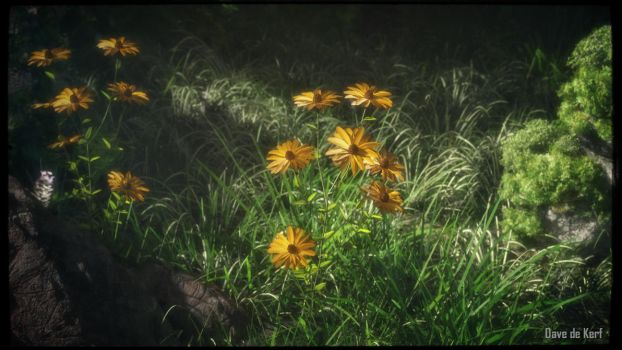 Flowers by Dave-DK