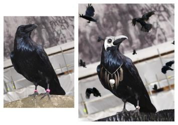Before and After_Plague Birds by KYghost