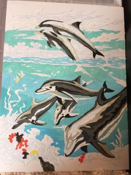 dolphin painting by numbers by loxanna