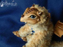 Dragon Rooney from the White Forest by Tantalia