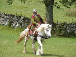 Border Reiver 29 by Axy-stock