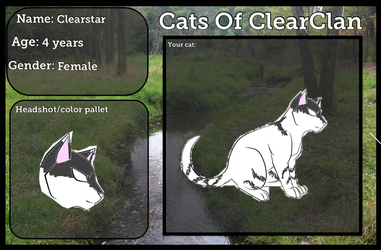 Clearstar of ClearClan by AskHarestar