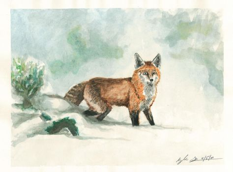 Winter Fox by Frabulator