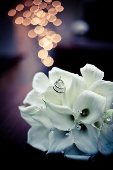 bouquet bokeh by Lady-Twiglet