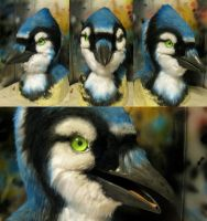 Bluejay with updated eyes! by Crystumes
