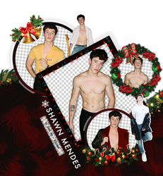 Photopack Png Shawn Mendes by Ricardo-Swift22