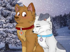 Snowy Hearts by BookPaws