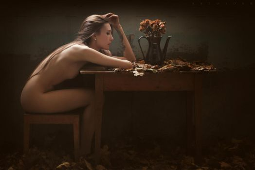 Art Of Autumn by ArtofdanPhotography