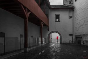 at  the castle in Nyon by Rikitza