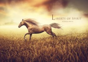 Spirit of Liberty by RodrigoBrito