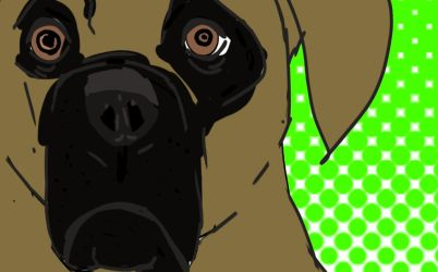 Daily doodle mastiff by TrippSilent